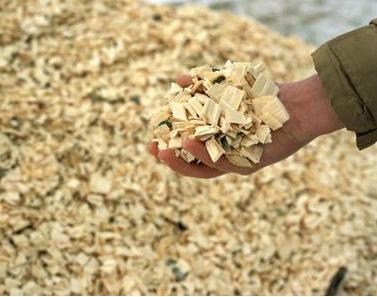 Prepared Biomass