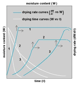 Drying Rate Curves