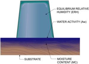 Measure Water activity