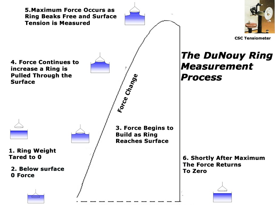 The duNouy Ring Measurement Process